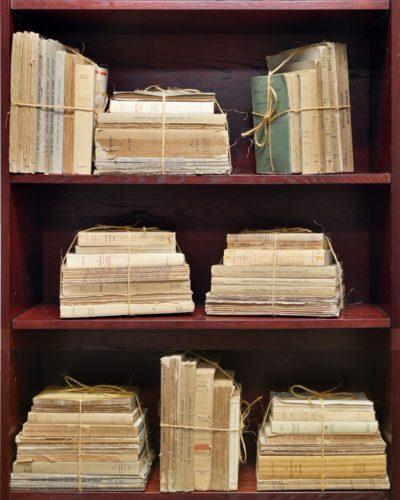 Antique Journal Bundle