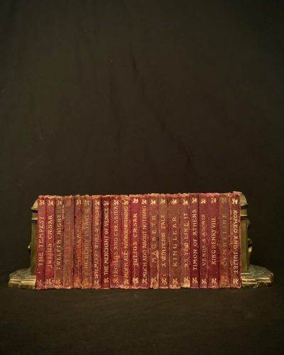 A Little Shakespeare - distressed full leather
